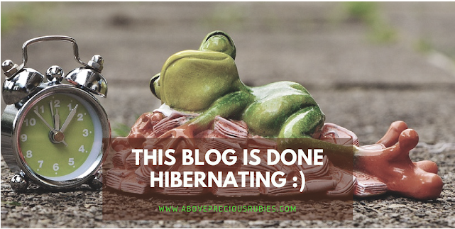 This Blog is Done Hibernating :)