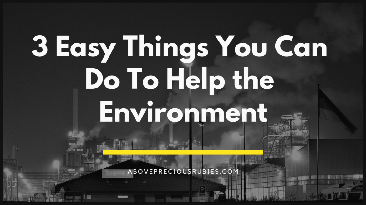 3 Easy Things You Can Do To Help the Environment